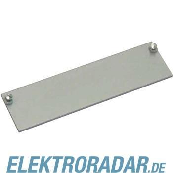 BTR Netcom Abdeckplatte 130810-01-E