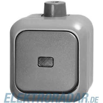 Busch-Jaeger Kontrollwechselschalter 2601/6 SKWDI
