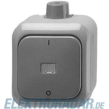 Busch-Jaeger Ausschalter  2-pol. 2601/2 WDI