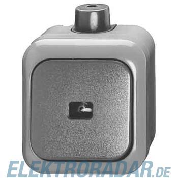 Busch-Jaeger Wipptaster 2621 WDI
