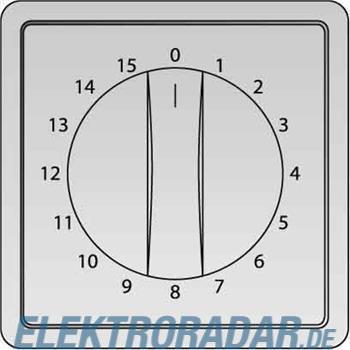 Elso Zentralplatte Zeitschalter 223094
