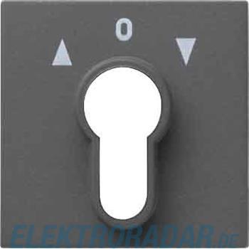 Gira Zentralpl. Schlüssel. anth 066428