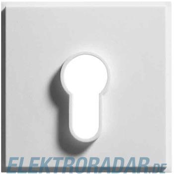 Gira Zentralpl. Schlüssel. rws 066466