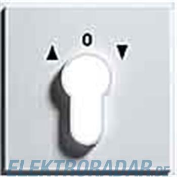 Gira Zentralpl. Schlüssel. anth 066467