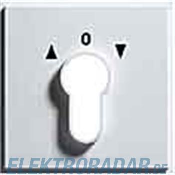 Gira Zentralpl. Schlüssel. alu 066465