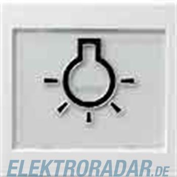 Gira Wippe Licht rws-gl 021603