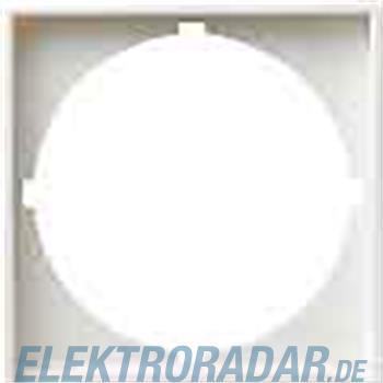 Gira Zentralplatte rws-gl 028103