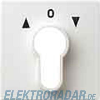 Gira Zentralplatte rws-gl 066403