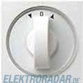 Gira Zentralplatte rws-gl 066603