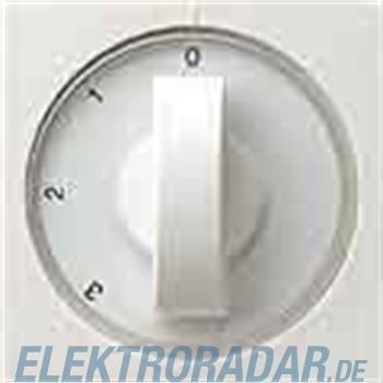 Gira Zentralplatte rws-gl 066903