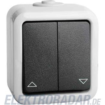 Peha Doppel-Taster 10A 250V gr D 629 T WAB