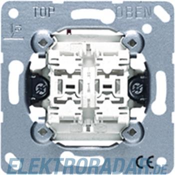 Jung Doppel-Taster 10AX 250V 539 U