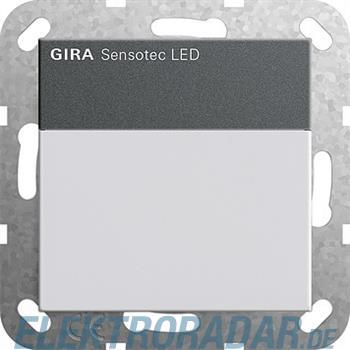 Gira Sensotec LED 236828