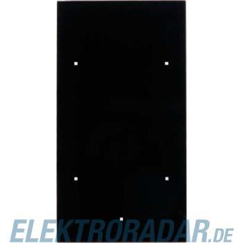 Berker Glas-Sensor 2fach TS 169205