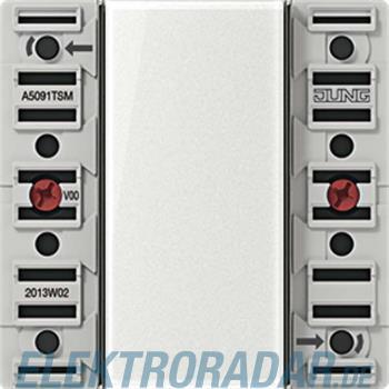 Jung KNX Tastsensor-Modul A 5091 TSM