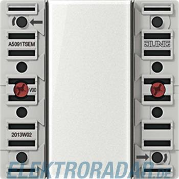 Jung Tastsensor-Erweiter.modul A 5091TSEM