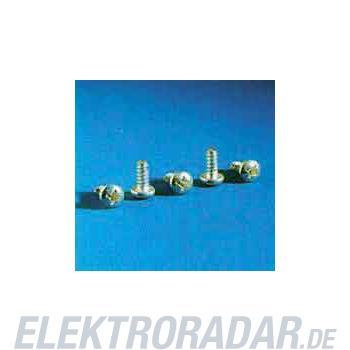 Rittal Blechschraube SZ 2486.500(VE300)