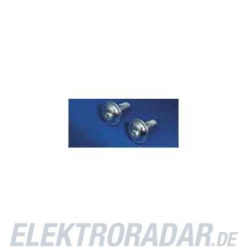 Rittal Torx-Schraube SZ 2504.500(VE300)