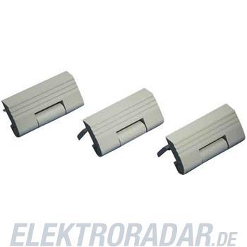 Rittal Scharnier TS 8800.110(VE6)
