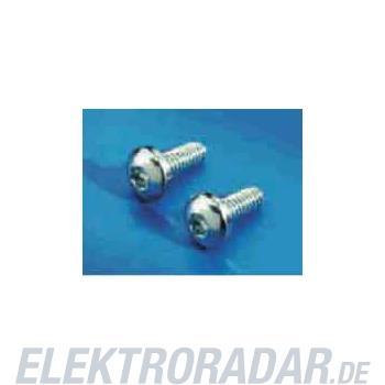 Rittal Torx-Blechschraube SZ 2486.300(VE300)
