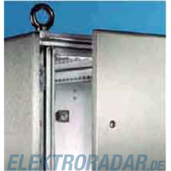 Rittal Seitenwand f.TS Edelstahl TS 8700.060(VE2)