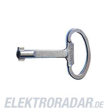 Rittal Daimler Benz Schlüssel SZ 2521.000