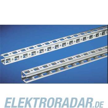 Rittal Schiene PS 4177.000(VE6)