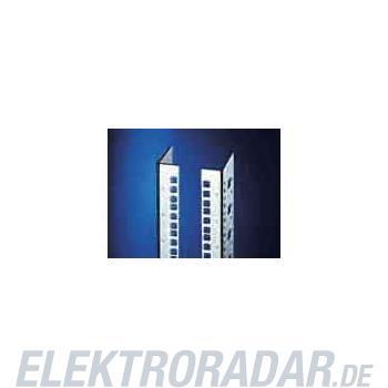 Rittal Profilschiene DK 7827.161(VE2)