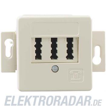 Rutenbeck Anschlußdose TAE 2x6/6NFF Up50S