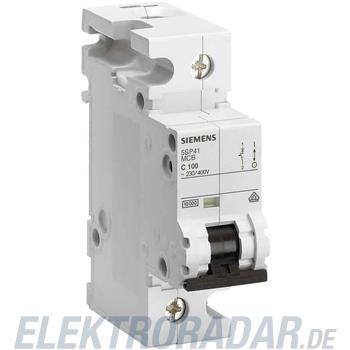 Siemens LS-Schalter 5SP4380-6