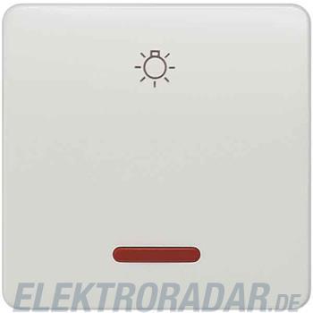 Siemens Wippe m.Fenster, Licht 5TG7806