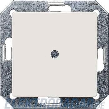 Siemens Blindplatte 5TG2588