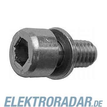 Striebel&John Zylinderschraube VE10 ZX258P10