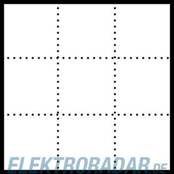 Siedle&Söhne Infoschild-Modul ISM 611-3/3-0 BG
