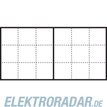 Siedle&Söhne Infoschild-Modul ISM 611-6/3-0 BG