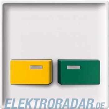 Merten Zentralplatte pws 444219