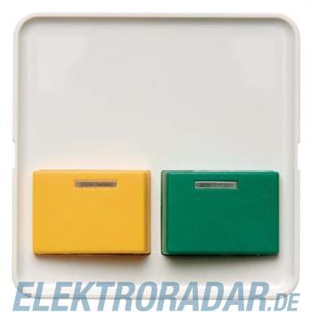 Berker Zentralstück pws 125349
