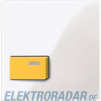 Merten Zentralplatte pws/gl 451619