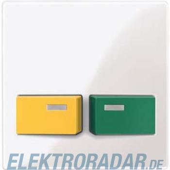 Merten Zentralplatte pws/gl 451719