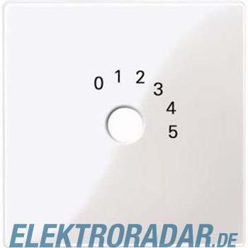 Merten Zentralplatte pws/gl 452019