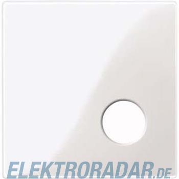 Merten Zentralplatte pws/gl 450919