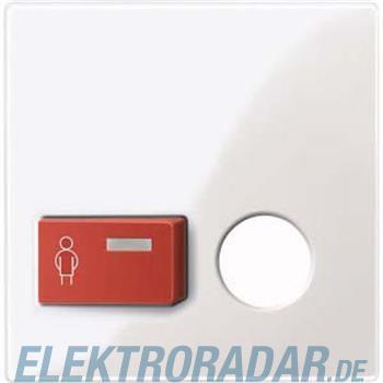 Merten Zentralplatte pws/gl 450619
