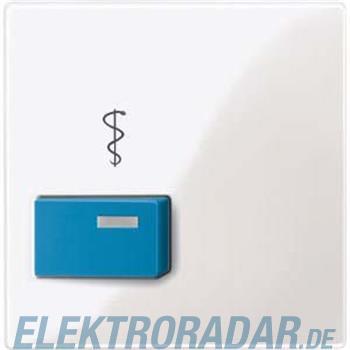 Merten Zentralplatte pws/gl 450519