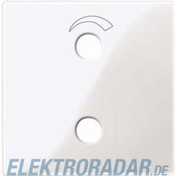 Merten Zentralplatte pws/gl 451919