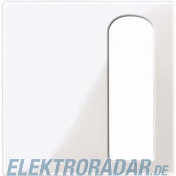 Merten Zentralplatte pws/gl 447719
