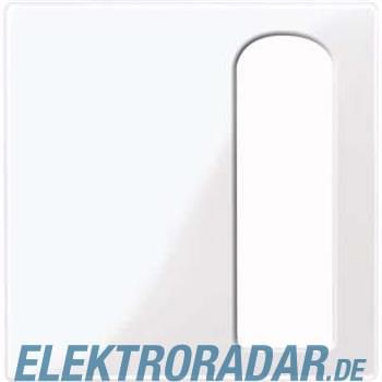 Merten Zentralplatte aws/gl 447725