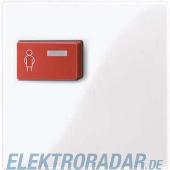 Merten Zentralplatte aws/gl 450125