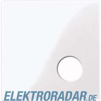 Merten Zentralplatte aws/gl 450925