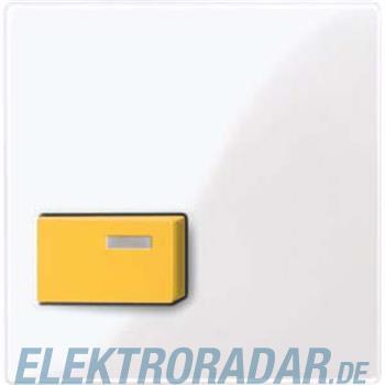 Merten Zentralplatte aws/gl 451625