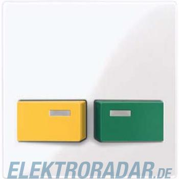 Merten Zentralplatte aws/gl 451725
